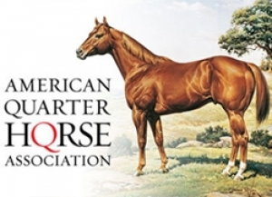 AQHA Rule-Change Proposal Deadline