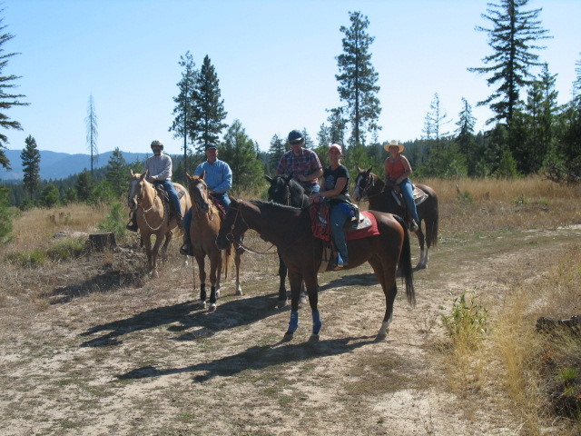 horse riders AQHA ride and drive program