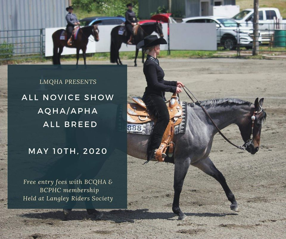 LMQHA ALL NOVICE SHOW